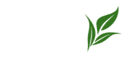 ICOEST 2013